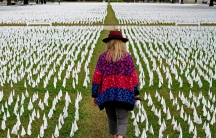 A woman wearing a colorful sweater and brimmed hat is shown from behind walking in a narrow path on a lawn filled with small white flags.