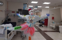 Leah Weiss, who is also a medial clown named Rosie, has been working in the COVID-19 ward of a Jerusalem hospital most of this year.