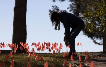 A woman in shown in shadow bending over near dozens of small red flags in the ground.