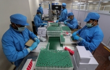 Several people are shown on either side of a long table wearing protective medical blue clothing and adding vials of COVID-19 vaccines to crates.