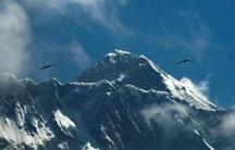 Birds fly above Mount Everest against a blue sky