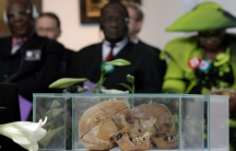 Two human skulls are shown in a glass case with several people wearing dark suits in the background.