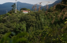 A visit to this farm near Cali, Colombia, inspired Mauricio Zuñiga to become a coffee exporter.