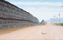 A ground-dwelling roadrunner bird is shown staring up at the US-Mexico border wall lined with razor wire.