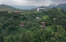At El Color de Mis Reves, or The Color of My Dreams, most of the land is covered by cloud forests. The owner wants the forest to regrow to give the wildlife more space.