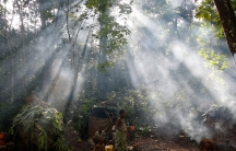 Shafts of sunlight filtering through the forest canopy strike smoke from fires burning outside family huts at an Mbuti pygmy hunting camp in the Okapi Wildlife Reserve outside the town of Epulu, Congo