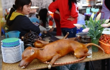 Dog meat for sale with beer.