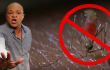 Jamaican music video for Zika