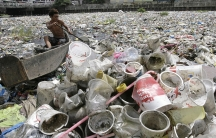 A boy collects plastic from a garbage-covered river in Manila, 2010.
