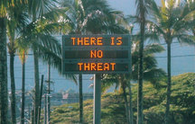 "A construction sign says ""There is no threat"" against a backdrop of palm fronds"