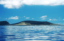 The island formed after an eruption at the Hunga Tonga-Hunga Ha'apai volcano, a two hour boat ride from the island of Tonga.