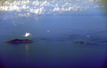 Some the islets disputed by China and Japan