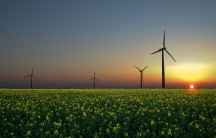 Wind turbines in a rapeseed field in Sandesneben, Germany.