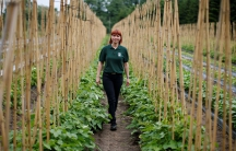"""Raluca Cioroianu from Romania poses for a photograph at the farm where she is a shop manager in Addlestone, Britain. """"I came here with good intentions, to work, to pay taxes, to improve my knowledge, my culture and to make a better life,"""" said Cioroianu."""