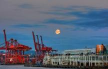 Harvest moon over Coal Harbor