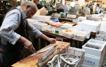 A Tsukiji shopkeeper prepares a basket of live eels for sale.