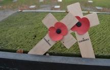 WWI memorial crosses