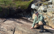 Don Johnson, a former park ranger, on a fossil walk near his home on the Bonavista Peninsula in Newfoundland. As a kid, he used to climb on these rocks, but he says people here never know the fossils in these rocks were so significant.