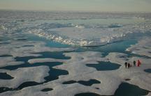 Sea ice melt