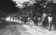 US Marines on patrol in 1915 during the occupation of Haiti. A Haitian guide is leading the party.