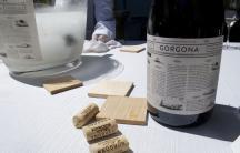 A bottle of the new Gorgona wine