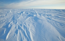 Wind patterns in the ice pack that covers the Arctic Ocean north of Prudhoe Bay, Alaska on March 18, 2011.