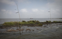 A work boat passes an oiled marshland one year after the Deepwater Horizon oil spill in Bay Jimmy near Myrtle Grove, Louisiana.