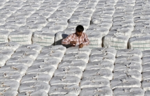 A trader checks stacked boxes of cotton before loading them onto a truck inside a cotton processing unit in Kadi near the western Indian city of Ahmedabad.