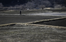 A man walks between a fallow rice field at Miyakoji area in Tamura, Fukushima prefecture on April 1, 2014. The area was finally opened to residents three years after the Fukushima Daiichi nuclear disaster.