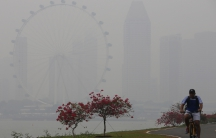 A man rides his bicycle past the Singapore Flyer observatory wheel shrouded by haze, in Singapore.