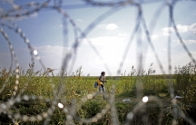A migrant is seen through the fence as he walks before crossing the into the country from Serbia at the border near Roszke, Hungary September 13, 2015.