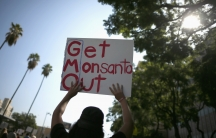 """People hold signs during one of many worldwide """"March Against Monsanto"""" protests against Genetically Modified Organisms (GMOs) and agro-chemicals, in Los Angeles on October 12, 2013."""