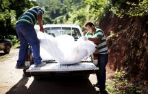 Two workers holding a white body body bag as they place it in the back of a truck