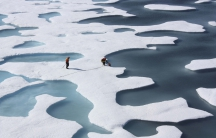 Freshwater ponds appear atop the Arctic ice