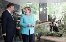 German Chancellor Angela Merkel and Chinese President Xi Jinping attend a welcome ceremony for Chinese panda bears Meng Meng and Jiao Qing at the Zoo in Berlin, Germany July 5, 2017.