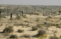 Bedouin loot barbed wire near a police checkpoint on the Egyptian border with Israel on the Sinai Peninsula.