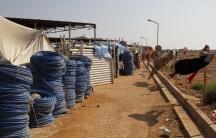 Displaced persons in Tawergha, Libya.