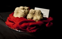 Truffles wait on a silver platter to be sold at the International Truffle Auction in Alba, Italy.