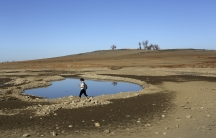 A visitor walks near the receding waters at California's Folsom Lake, which is at 17 percent of its capacity, On April 1, California Governor Jerry Brown announced unprecedented mandatory water restrictions and ordered the State Water Resources Board to r