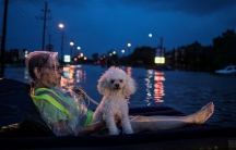 A rescue helicopter hovers in the background as an elderly woman and her poodle use an air mattress to float above flood waters from Tropical Storm Harvey while waiting to be rescued from Scarsdale Boulevard in Houston, Texas, U.S.
