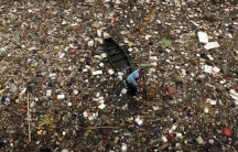 A scavenger collects plastic for recycling in a river covered with rubbish in Jakarta, Indonesia, April 20, 2009.