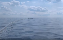 A simulation of the floating screens to be deployed by Ocean Cleanup to capture small plastic down to 1 cm, up to massive discarded fishing nets.