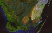 Most of Miami-Dade County and greater South Florida is barely feet above sea level, with new development moving into some of the most flood-prone areas.