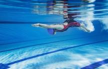 Swimmer. Credit: Shutterstock