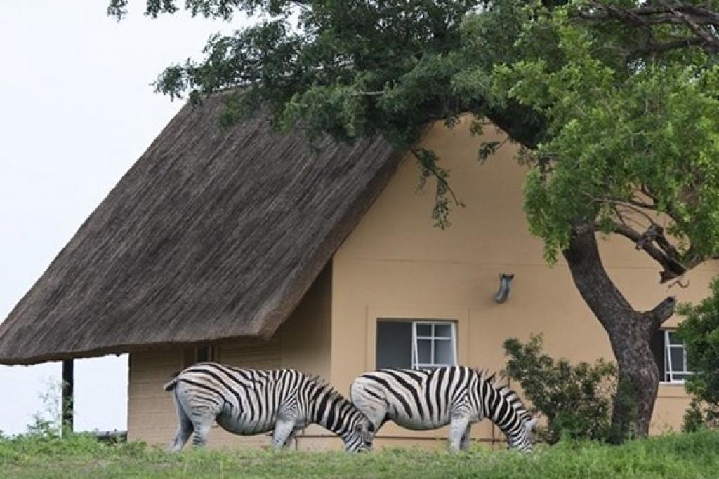Zululand, South Africa