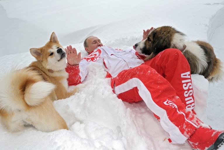 Vladimir Putin shows softer side walking his pet dogs ...
