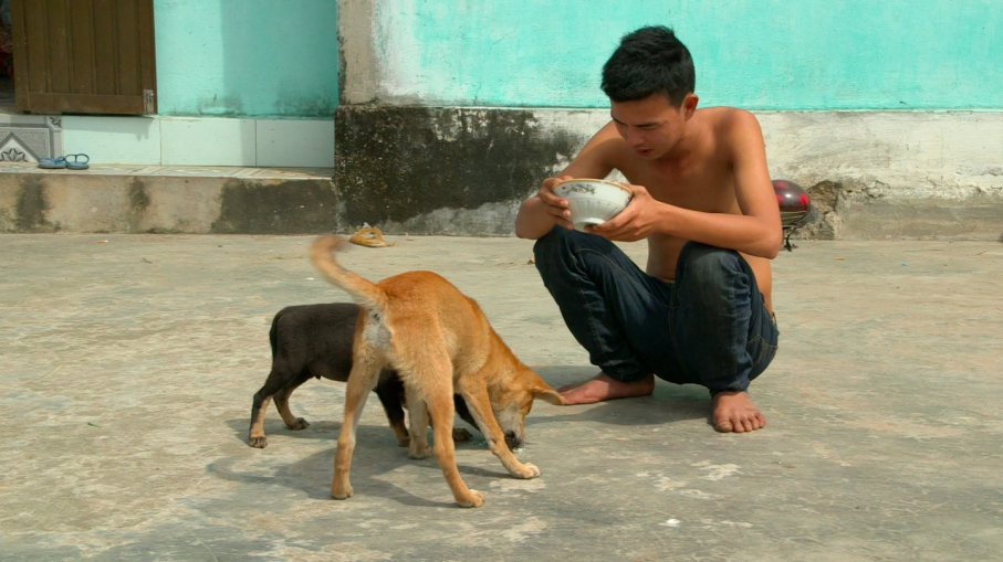 Dog Thief Down: Pet lovers turned vigilantes in Vietnam