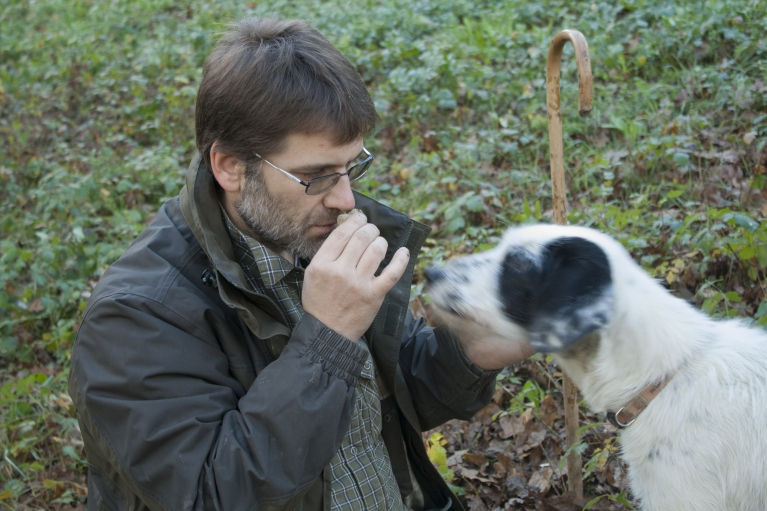 Truffle hunter Walter Tedesco and his dog, smell their latest find.