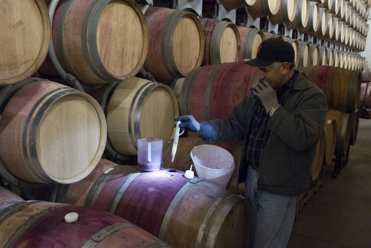 A winemaker tests a barrel of Grgich Hills wine at the winery in Napa Valley. Grgich was part of the generation of winemakers, many of them immigrants, who turned Napa Valley from an agricultural backwater into one of the winemaking capitals of the world