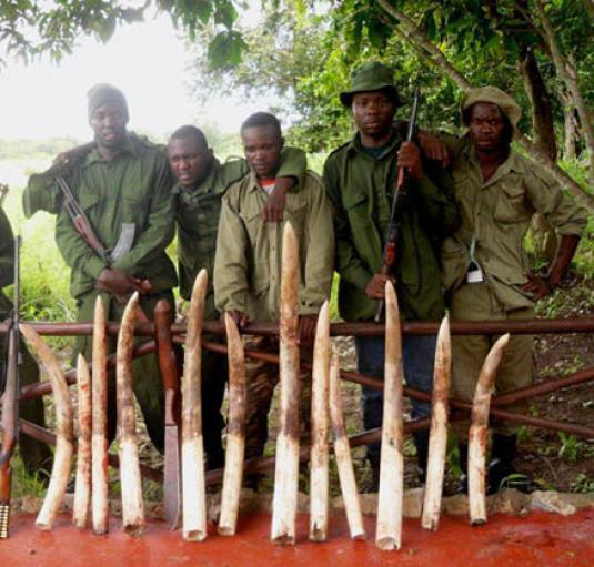Anti poaching rangers in Tanzania